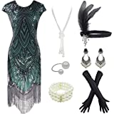 1920s Fringed Sequin Flapper Gatsby Costume Sleeve Dress w/Accessories
