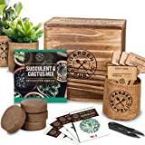 Cactus Succulent Seed Starter Kit - Indoor Garden Grow Kits, Seeds for Planting Mini Cactus Succulent Plants, Plant Markers,