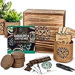 Cactus Succulent Seed Starter Kit - Indoor Garden Grow Kits, Seeds