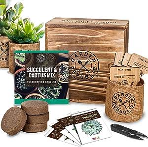 Cactus Succulent Seed Starter Kit - Indoor Garden Grow Kits, Seeds for Planting Mini Cactus Succulent Plants, Plant Markers, Soil, Pots, Wood Box - Gardening Gifts, Terrarium, Cacti Succulents Decor