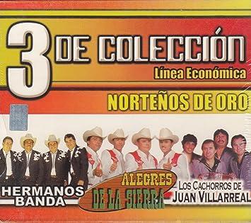 Alegres de La Sierra, Los cachorros de Juan Villareal Hermanos Banda - 3 de coleccion nortenos de oro BOX SET 3CD - Amazon.com Music