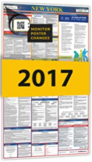 Amazon new york federal combination labor law posters new 2017 new york all in one state federal labor law posters for workplace sciox Choice Image