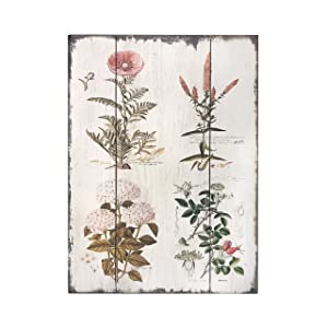 "Barnyard Designs Vintage Florals Botanical Wood Plaques, Primitive Country Farmhouse Home Decor Sign 16"" x 12"""
