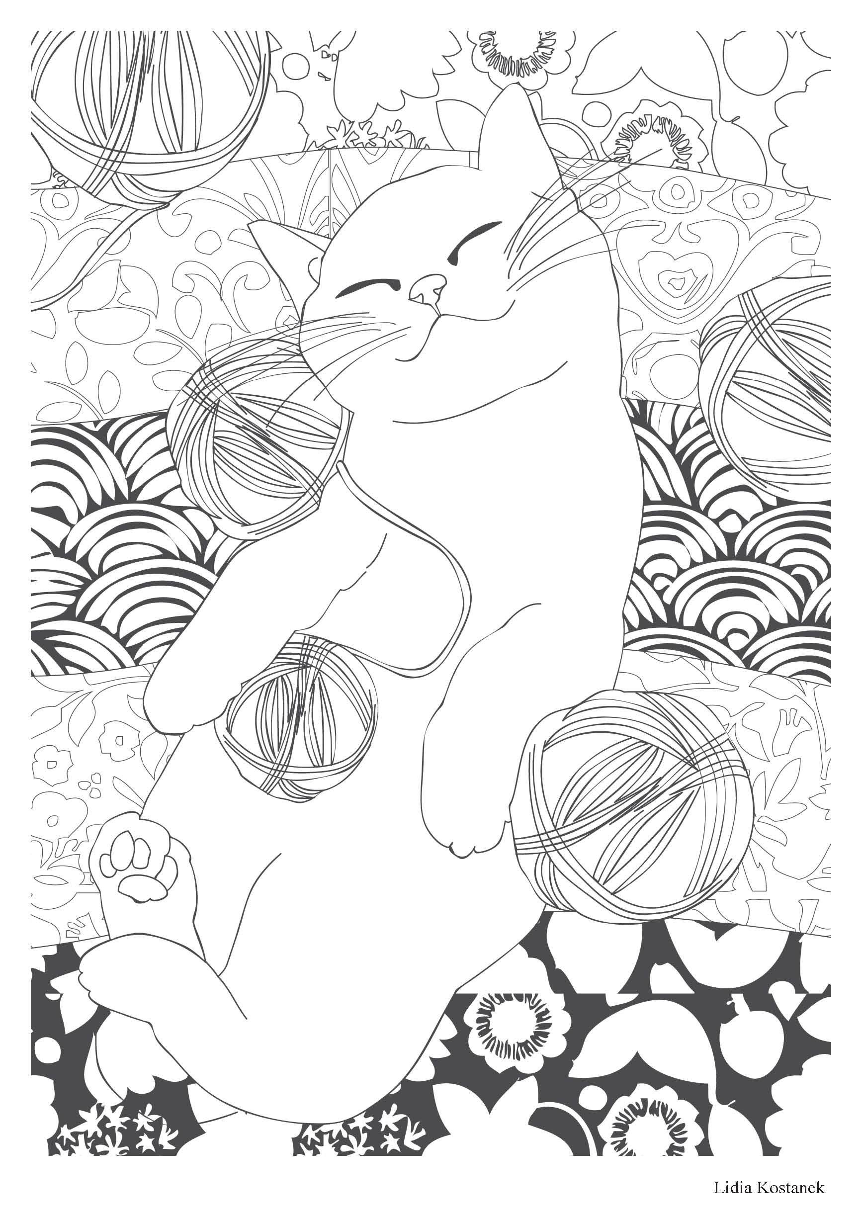 CHAT THéRAPIE 100 COLORIAGES ANTI STRESS Amazon COLLECTIF Books