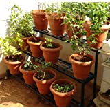 Akura Gardening Stand (Black Color, Steel Tubes - 20 X 20mm; Size- 1000mm X 900mm X 800mm)