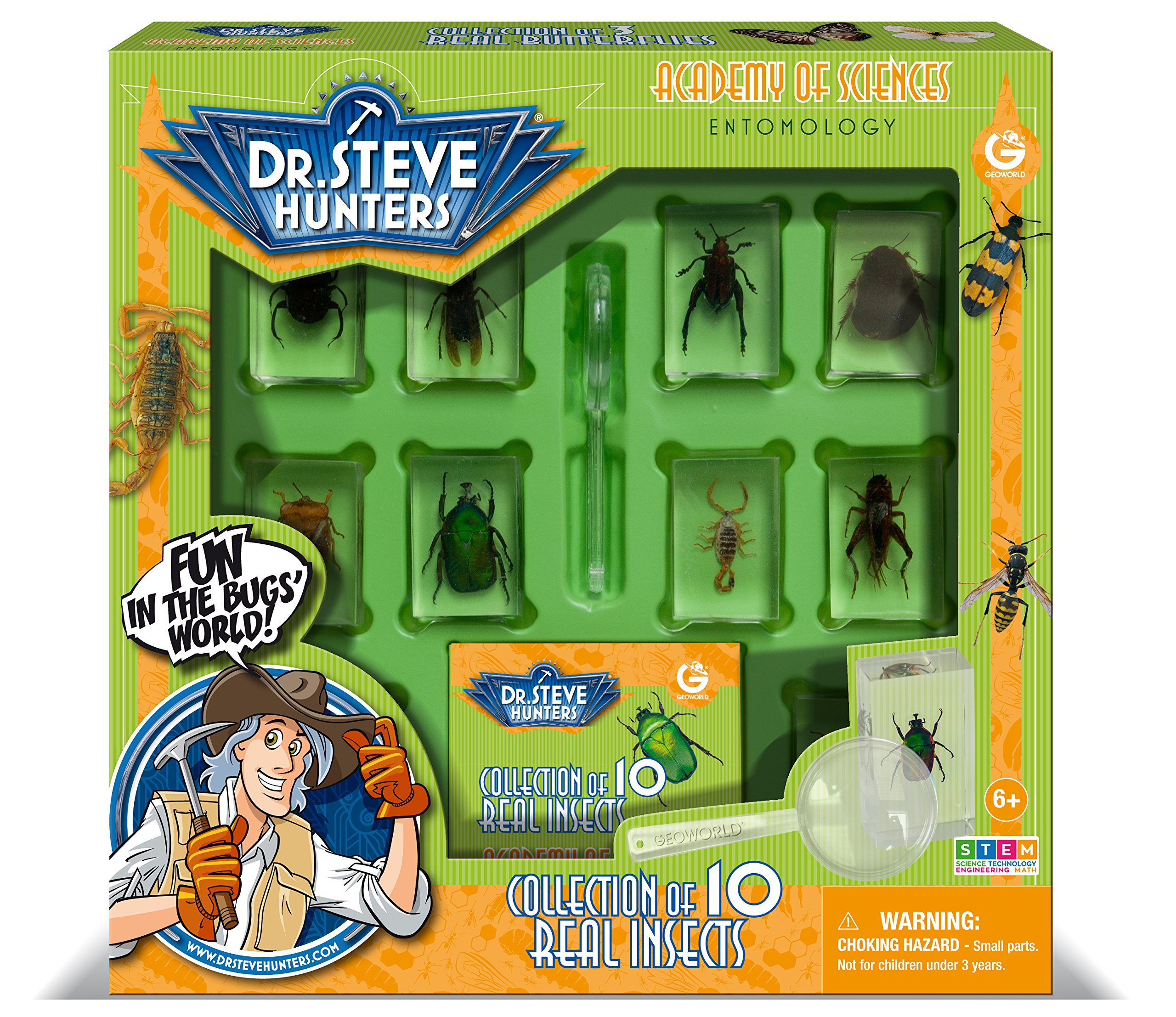 Uncle Milton Dr. Steve Hunters - Bugs World Collection - 10 Real Insects - Scientific Educational Toy by Uncle Milton