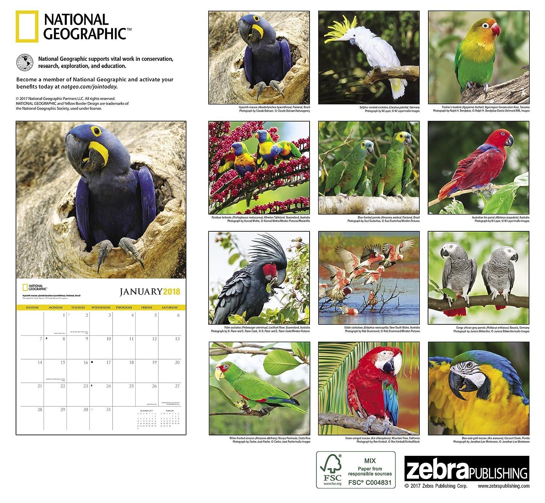 National Geographic 2018 calendario de pared, diseño de ...