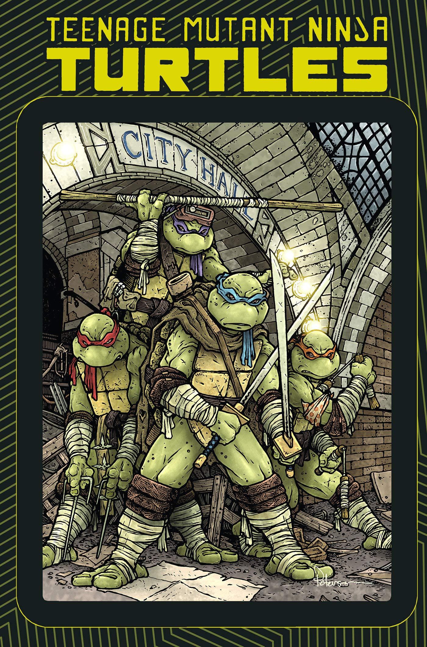 Amazon.com: Teenage Mutant Ninja Turtles: Macro-Series ...