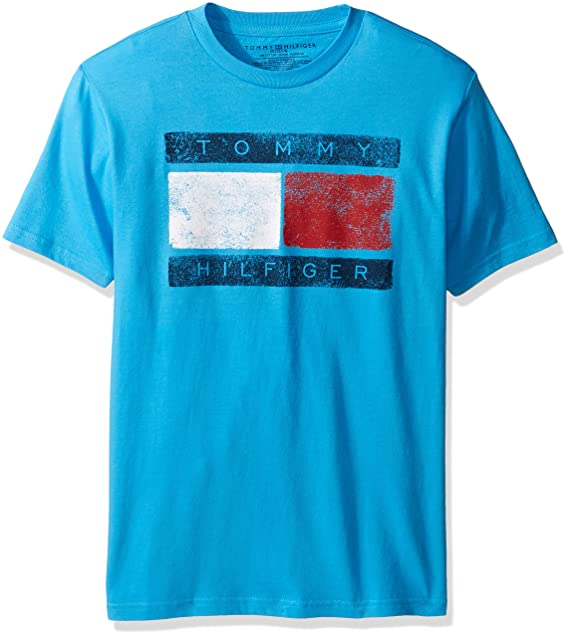 8bfd72c4 Tommy Hilfiger Boys' Little Short Sleeve Tommy Flag T-Shirt, Atlantis Sea,