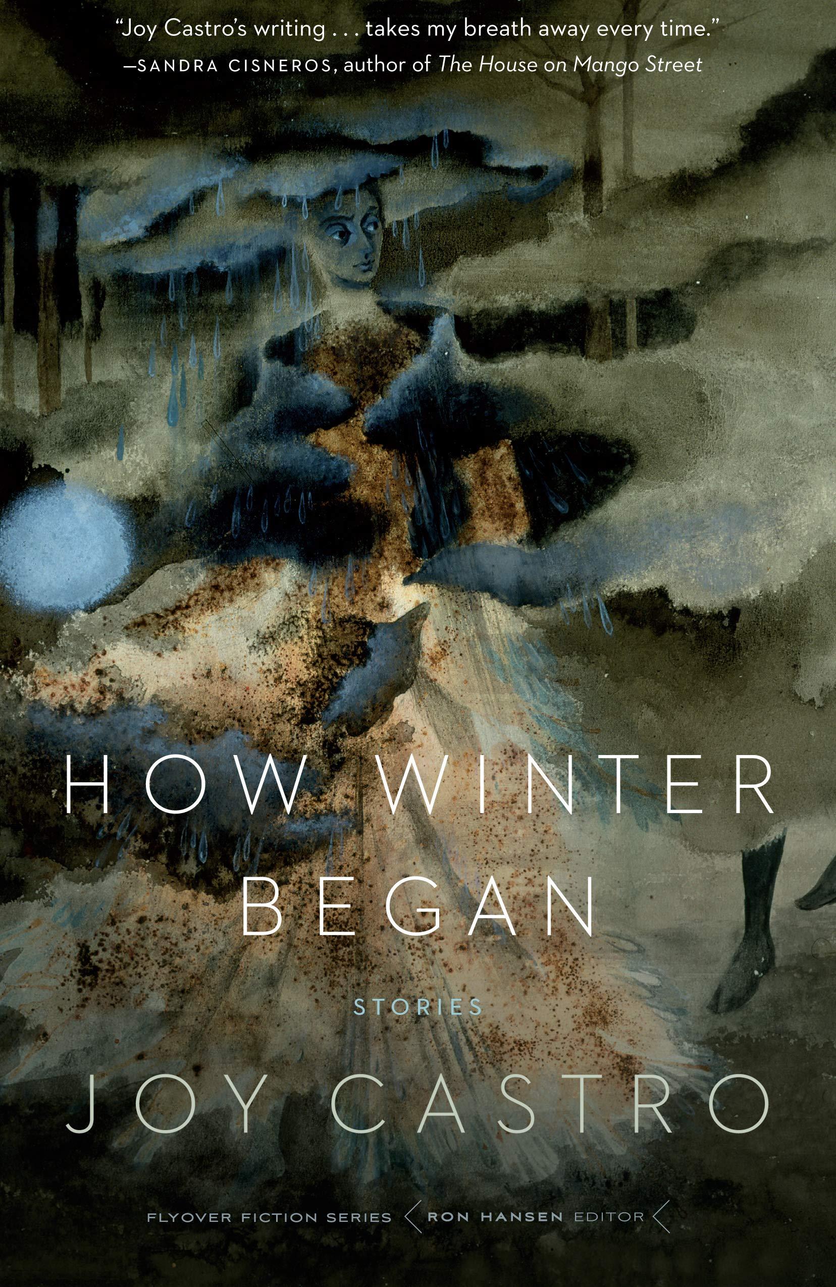 How Winter Began: Stories (Flyover Fiction): Amazon.es ...