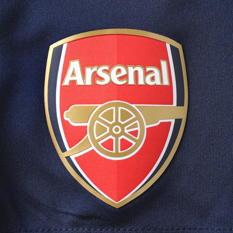 Puma AFC Replica SHO Alte Arsenal - Chándal de fútbol para Hombre ...