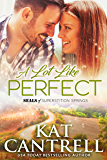 A Lot Like Perfect (SEALs of Superstition Springs Book 2)