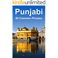 Punjabi: 50 Common Phrases