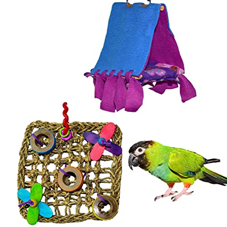 Amazon com : Parrot Kook Bird Toy and Cabana Hut Set : Pet