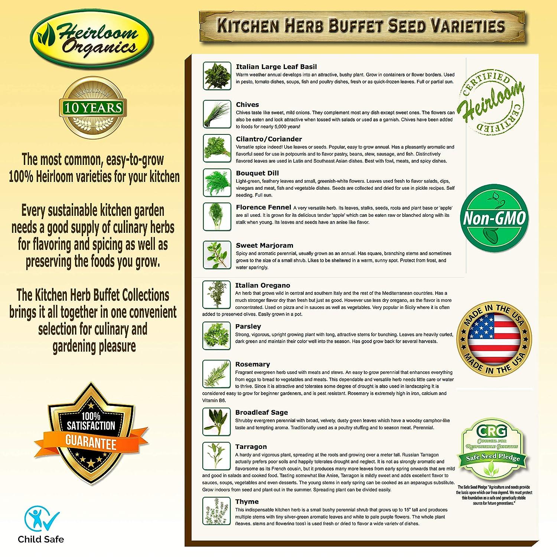 Amazon.com: Hierba de cocina semillas buffet – hierbas ...
