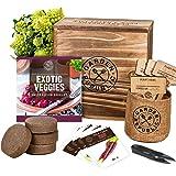 Indoor Vegetable Garden Seeds Starter Kit - 4 Non-GMO Heirloom Seeds for Planting Vegetables, Soil, Pots, Plant Markers, Trim
