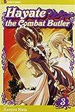 Hayate the Combat Butler, Vol. 3