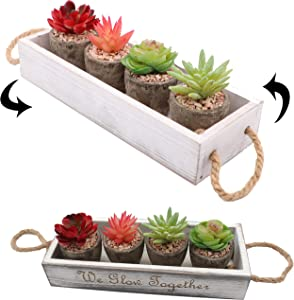 Forgottenitem Artificial Succulent Plants Eucalyptus Fake Potted Mini Small Faux Cactus Cacti for Wedding Home Office Gardens Decor Assorted Set of 4 in Rustic Box Planter Arrangement Hanging Rope