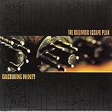 Calculating Infinity (Orange & Black Merge Lp) [Vinyl LP]