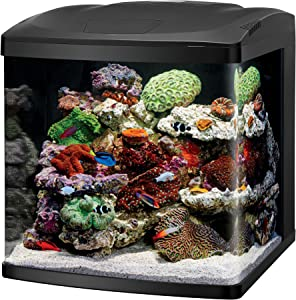 Coralife LED Fish Tank