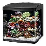 Coralife LED BioCube Aquarium Kit, 32 Gallon