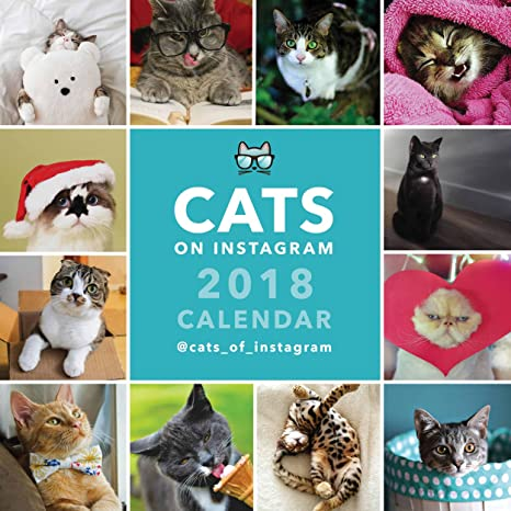 Gatos en Instagram cuadrado calendario 2018