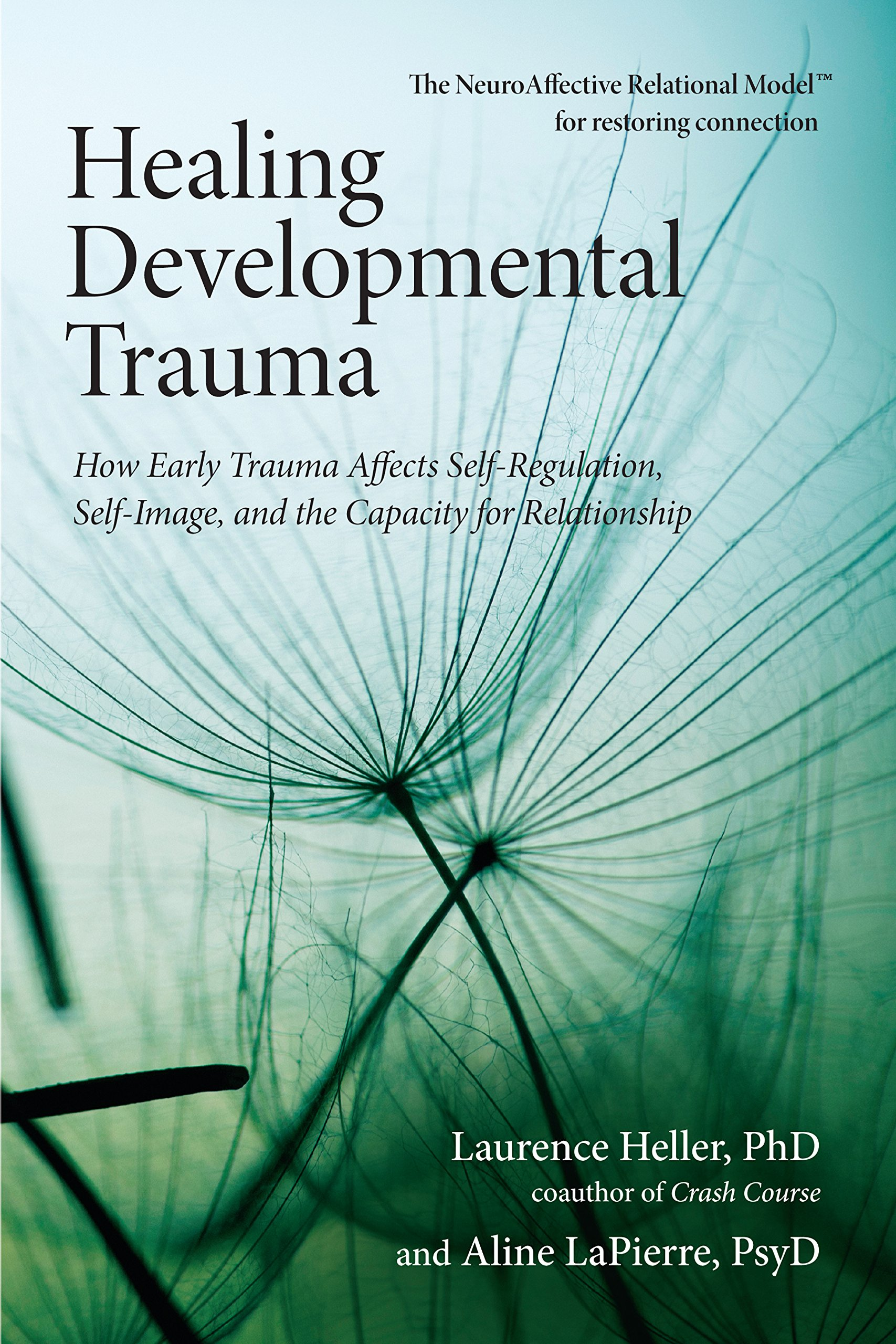 amazon healing developmental trauma how early trauma affects self