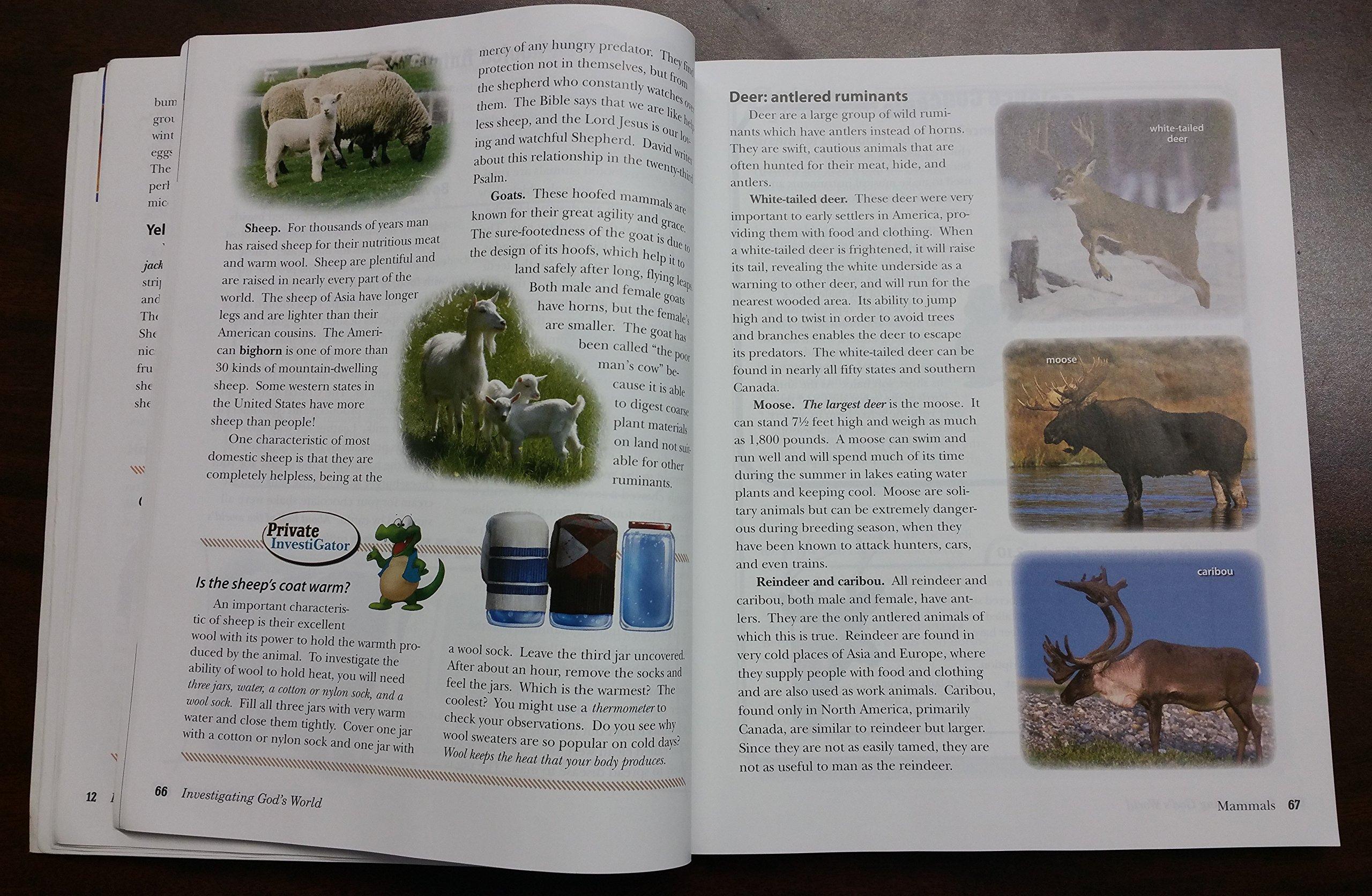 Investigating God's World (5th Grade, ISBN 13515102): McAlister, Nordtvedt  Rickard: Amazon.com: Books
