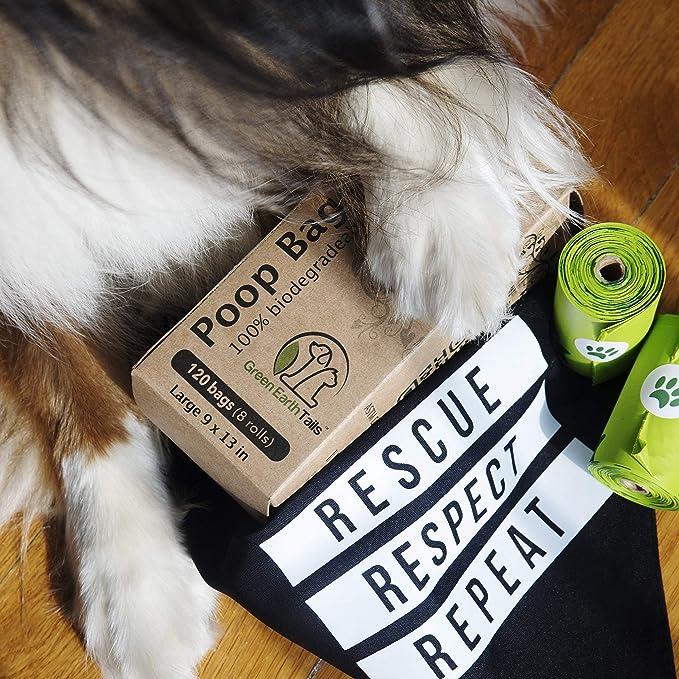 Amazon.com: Green Earth colas bolsas de caca perro bolsas de ...