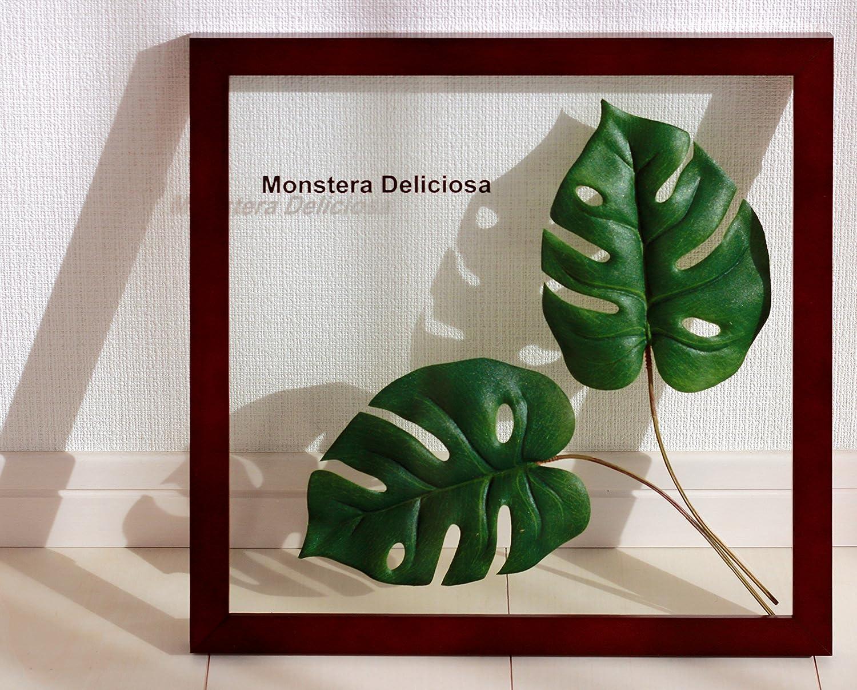 リーフパネル Forest Deco Monstera Deliciosa2(モンステラ デリシオサ)/ 絵画 壁掛け のあゆわら B00C2S2PBA