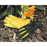 Gants de jardinage Dry Touch Gold Leaf pour dames