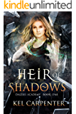 Heir of Shadows (Daizlei Academy Book 1)