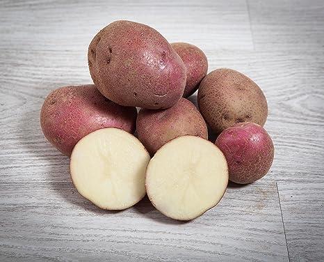 13 kg. Patata Roja/Especial para Guisar y Cocer - Selección Gourmet