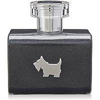 Ferrioni Grey Terrier de Ferrioni para Caballero Eau De Toilette Spray 100 ml