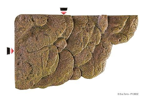 Vasca Da Esterno Per Tartarughe : Exo terra turtle bank large isola galleggiante per tartarughe