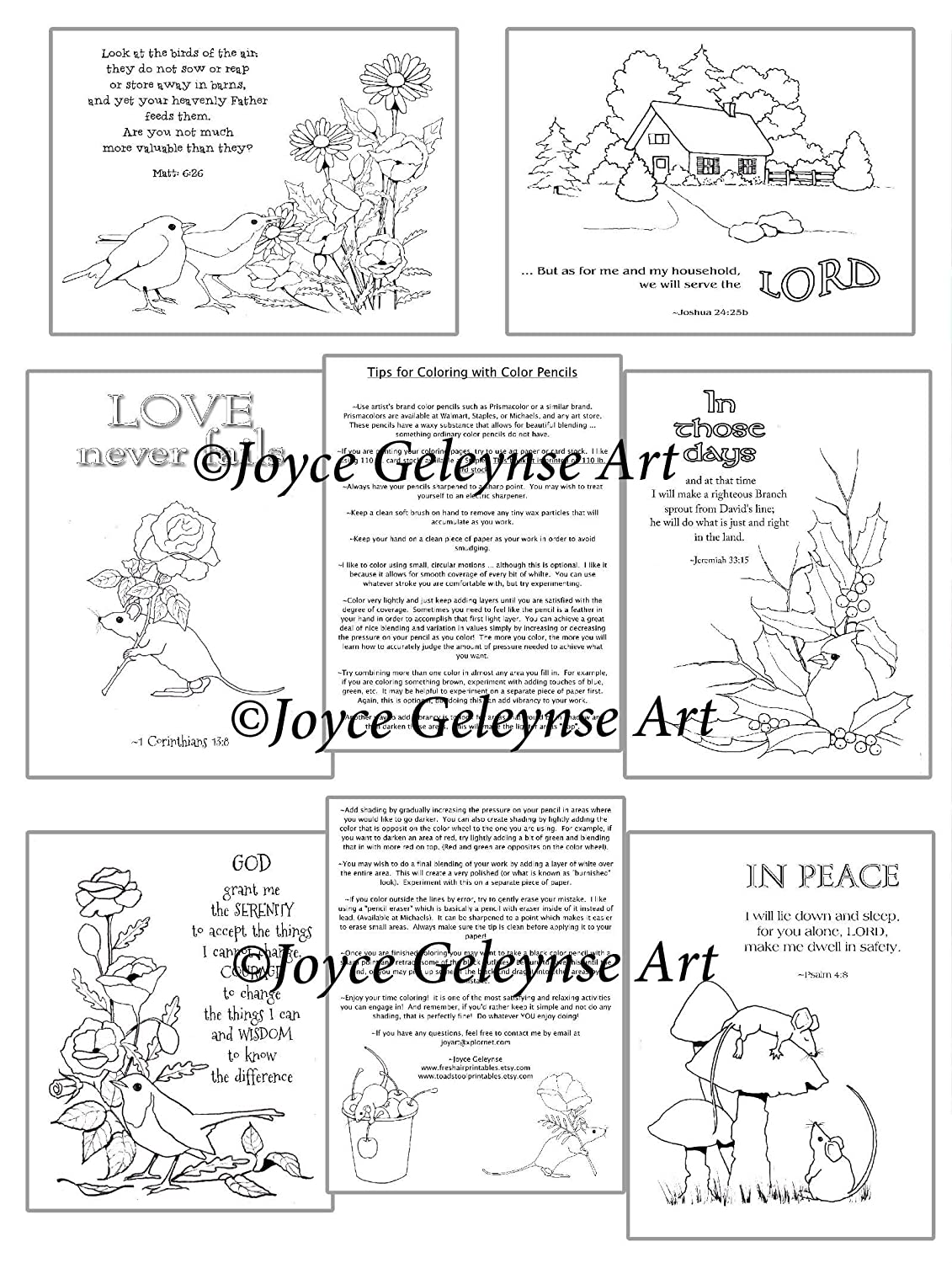 - Amazon.com: BIBLE VERSES TO COLOR: Hand Illustrated Bible Verses