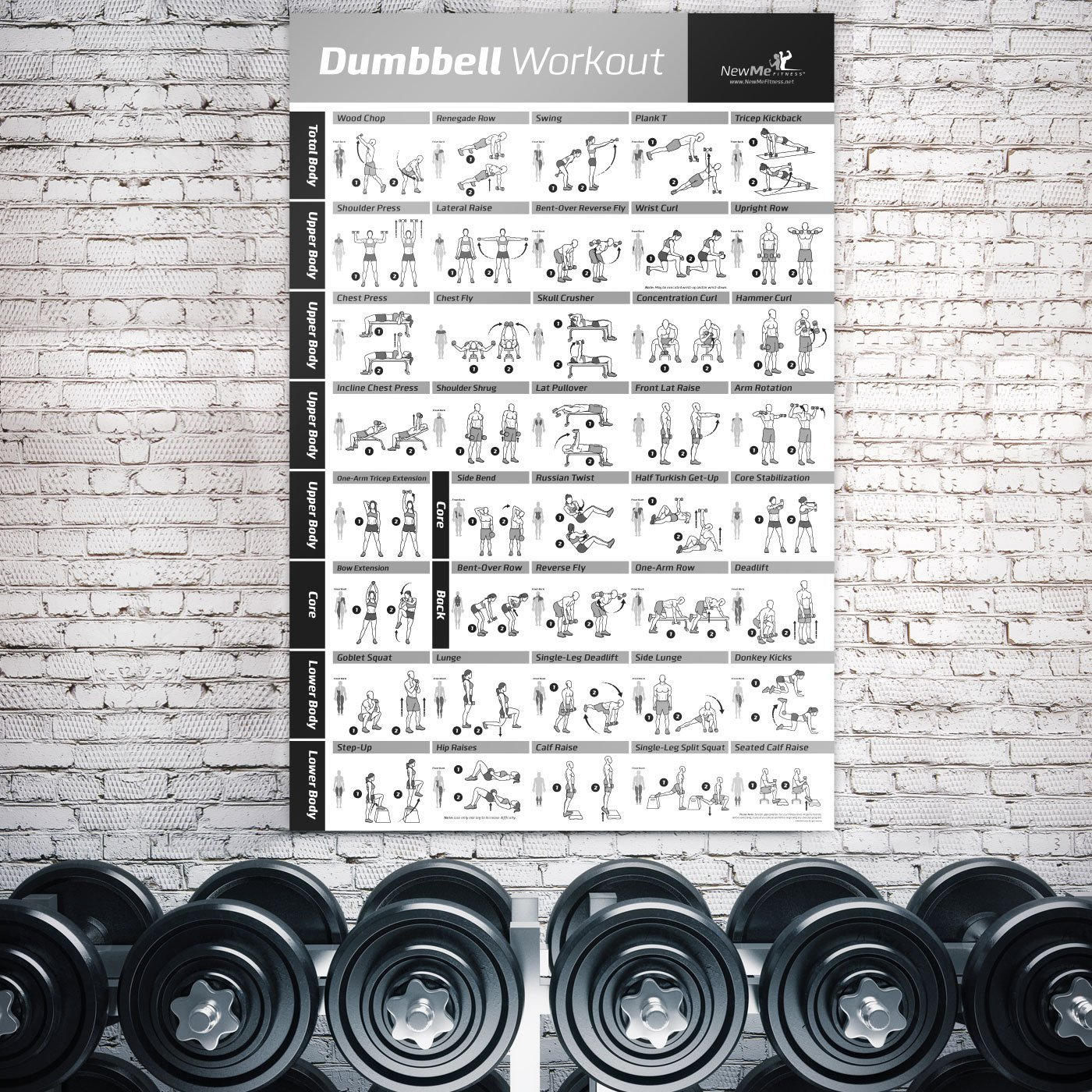 Amazon dumbbell exercise poster laminated workout strength amazon dumbbell exercise poster laminated workout strength training chart build muscle tone tighten home gym weight lifting routine body geenschuldenfo Choice Image