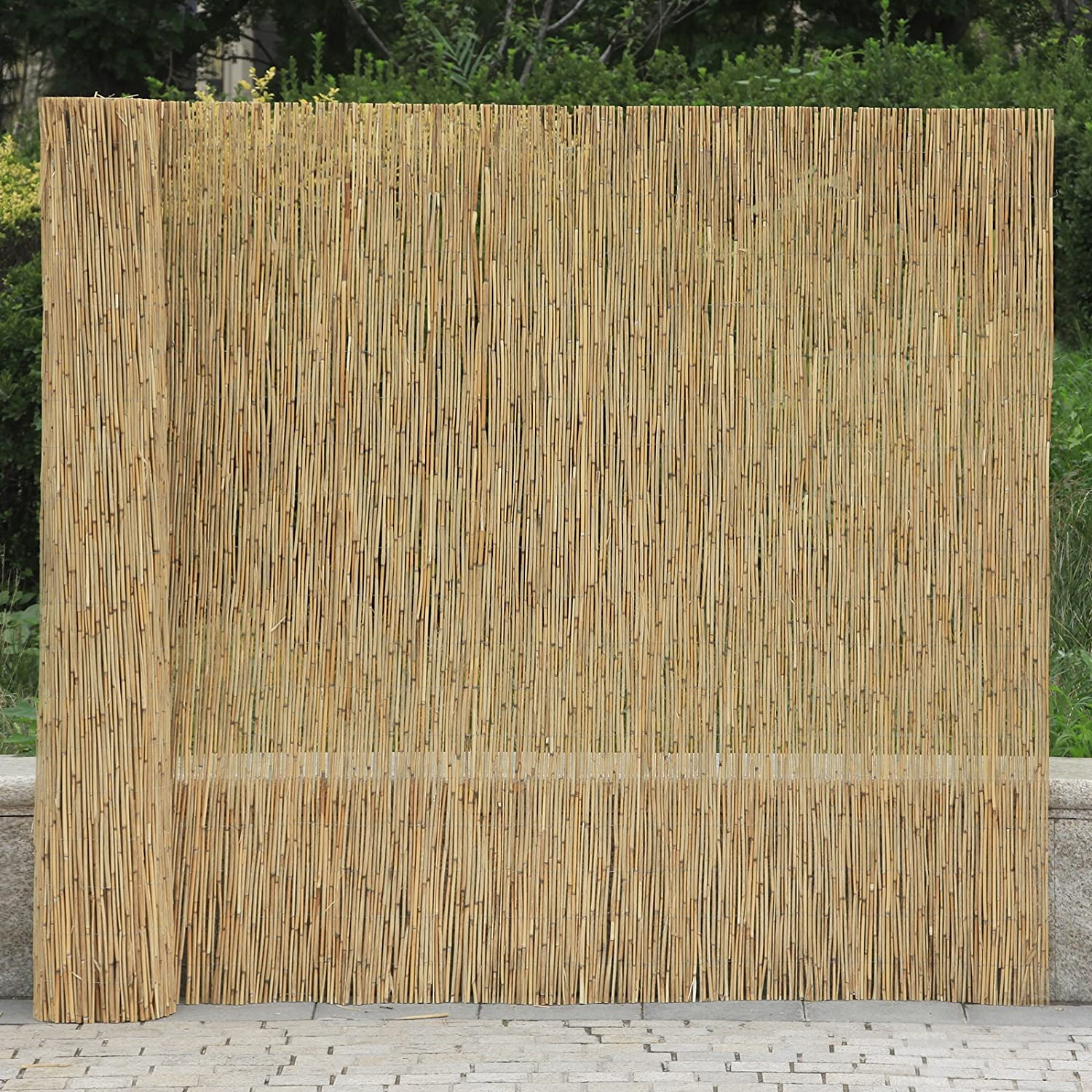 Amazon 6x16 reed reed fencing screening privacy fence amazon 6x16 reed reed fencing screening privacy fence panel garden balcony wind protection patio lawn garden baanklon Choice Image