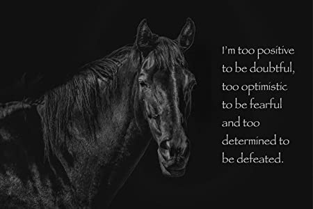"""HORSE RIDING MOTIVATIONAL QUOTE POSTER /""""Dreams/"""" PHOTO PRINT"""