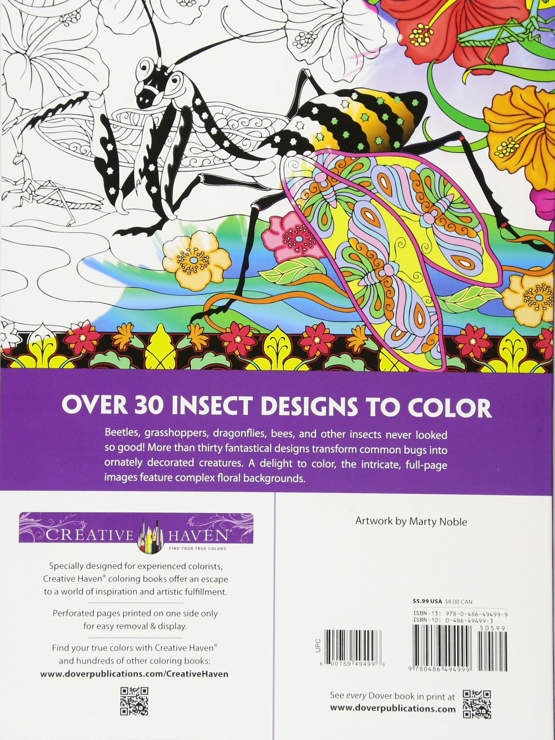 Amazon.com: Creative Haven Incredible Insect Designs Coloring Book ...