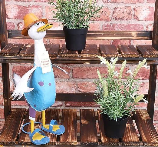 Christmas Concepts® Pato de Metal de pie de 39 cm - Decoración de jardín Interior/Exterior (Macho Azul): Amazon.es: Jardín