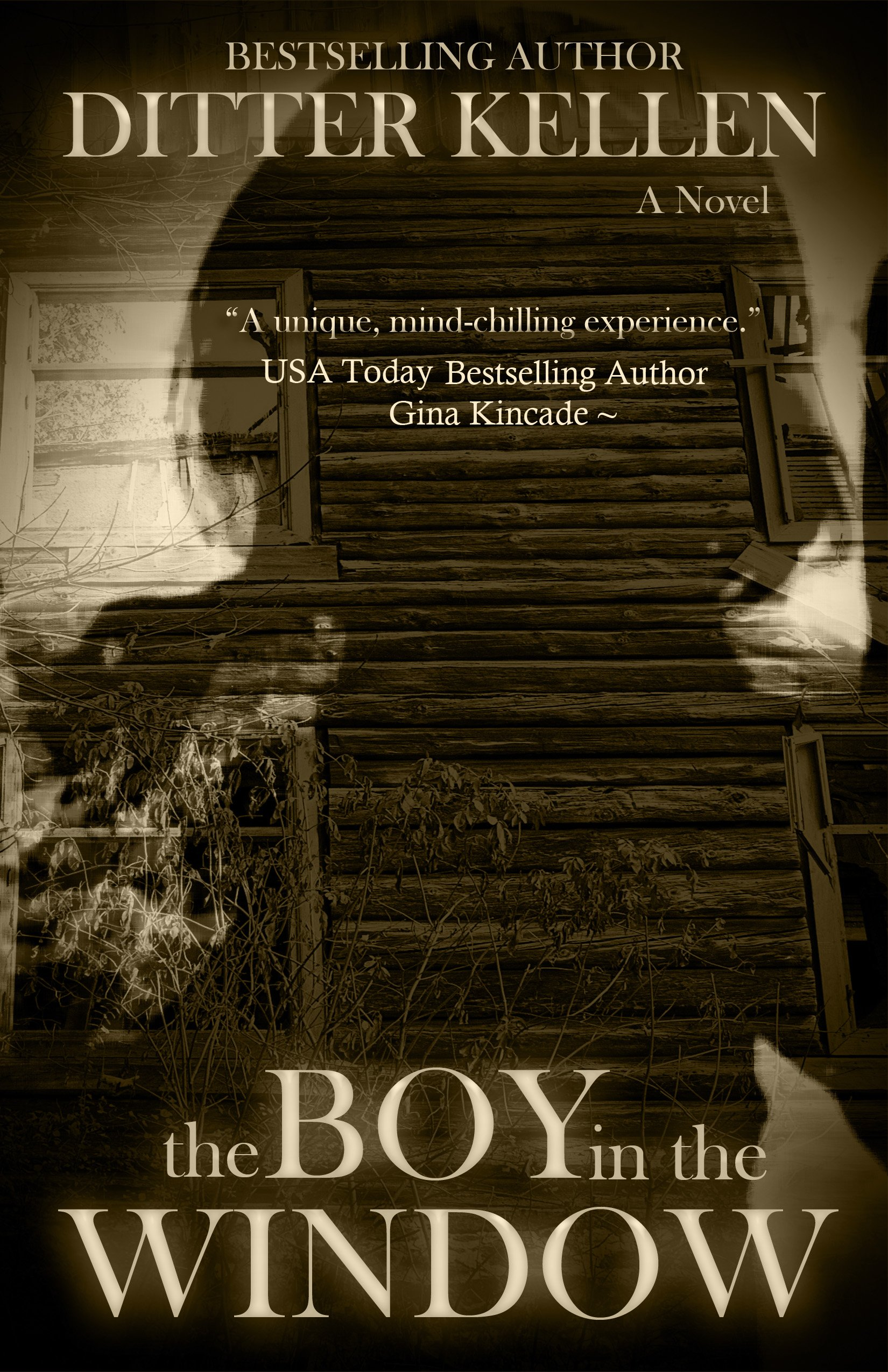 The Boy in the Window: A Paranormal Thriller
