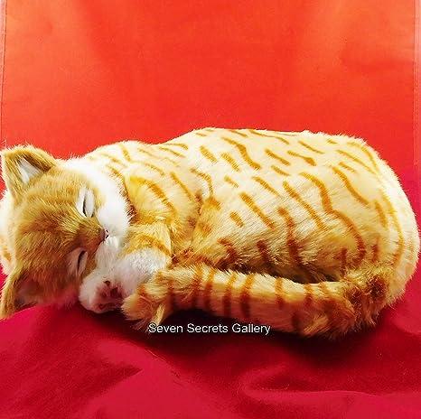 Gizmo | Realista saco de dormir tamaño natural el jengibre y los de gato blanco |