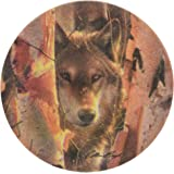 Thirstystone Stoneware Birch Wolf Coaster, Multicolor