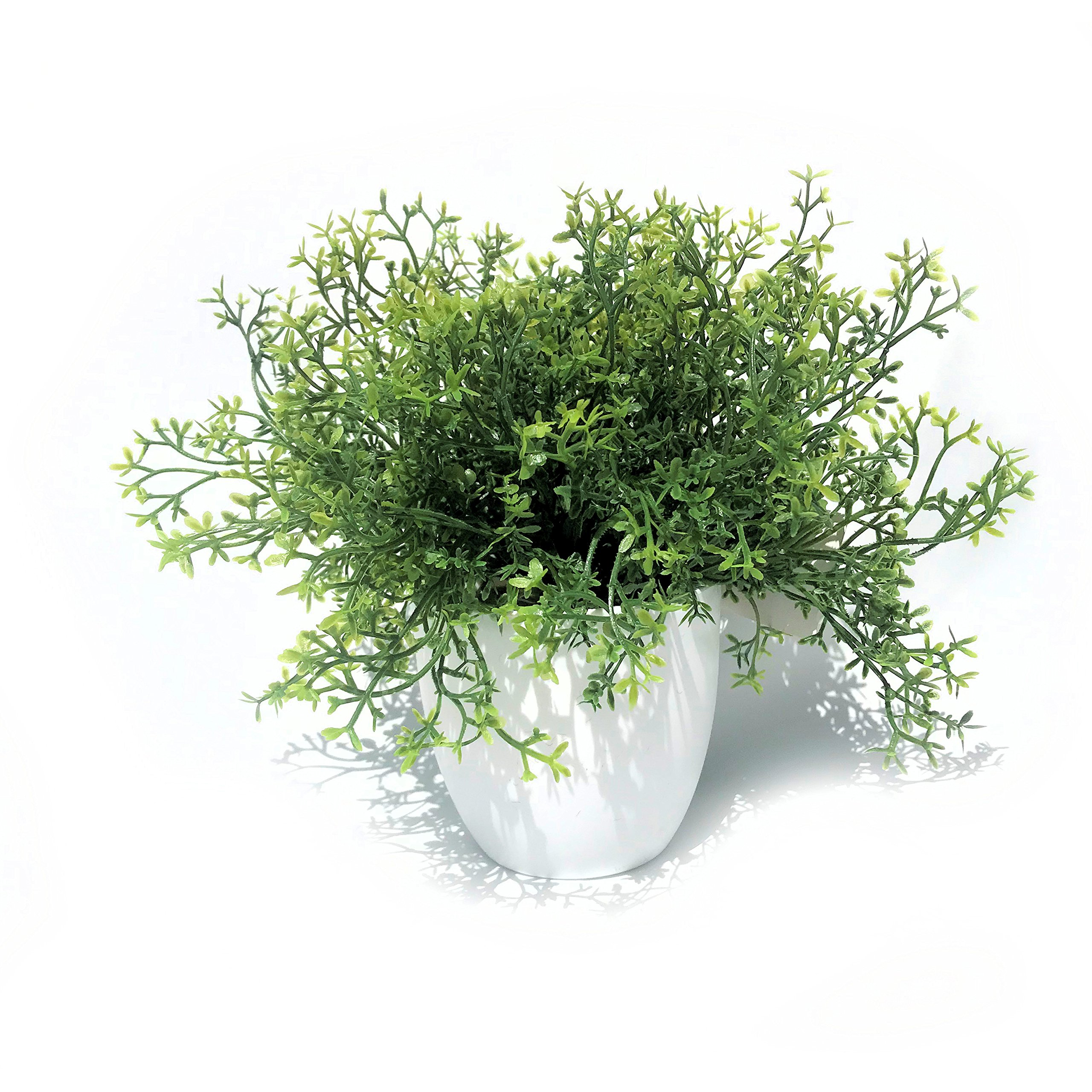 Whole House Worlds The Realistic Faux Baby Thyme, Potted Plant, Houseplant, Kitchen, Lushly Leafed, White Pot, 6 Inches Diameter x 9 ¾ Tall, Greenery