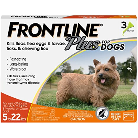 Amazoncom Frontline Plus For Dogs Small Dog 5 22 Pounds Flea And