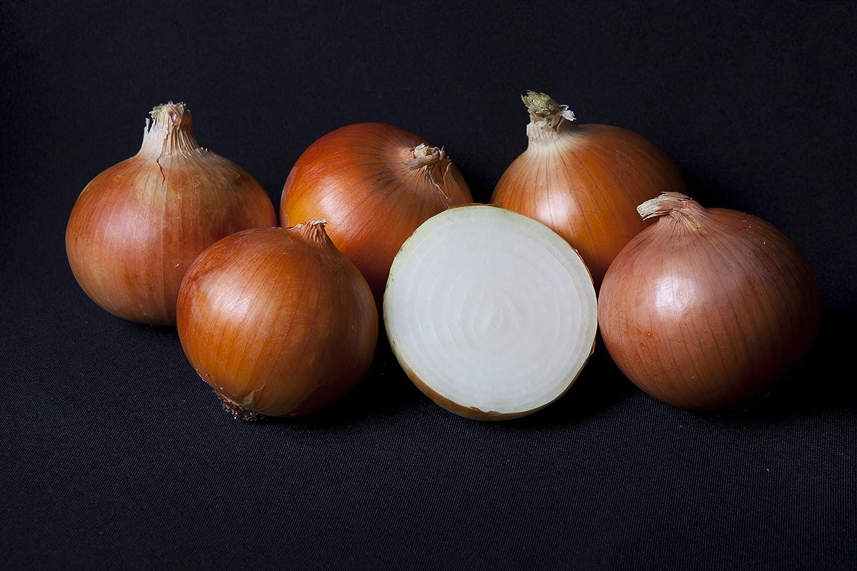 5 kg. Cebolla Grano (Común) tamaño GRANDE - Selección Gourmet