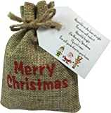 Christmas Eve Box Fillers For Children - Reindeer Dust Reindeer Food in a Merry Christmas Gift Bag by Libby's Market Place