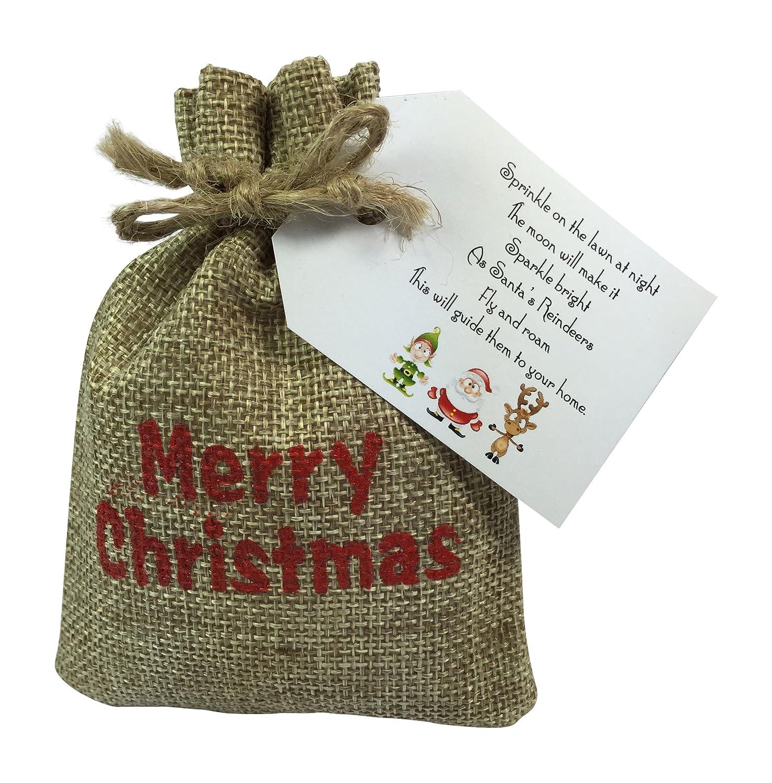 silver i believe santa father christmas polar express style jingle