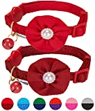 Blueberry Pet Pack of 2 Cat Collars, The Beloved